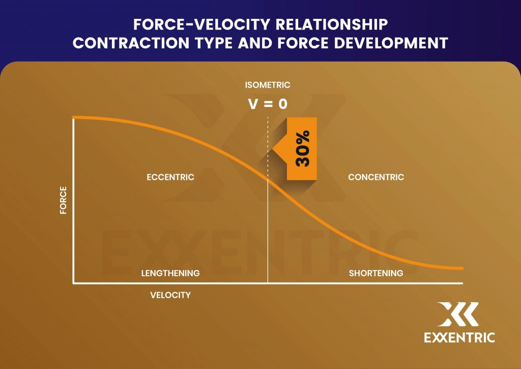 force velocity relationship eccentric contractions and doms